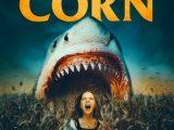 Rekiny w polu kukurydzy – arcydzieło gatunku!